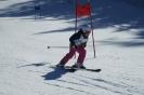 19.02.2017 - Vereinsmeisterschaft Ski Alpin und Snowboard
